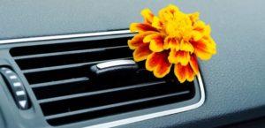 ¿Qué significan los olores de mi coche?